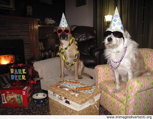 alle feste