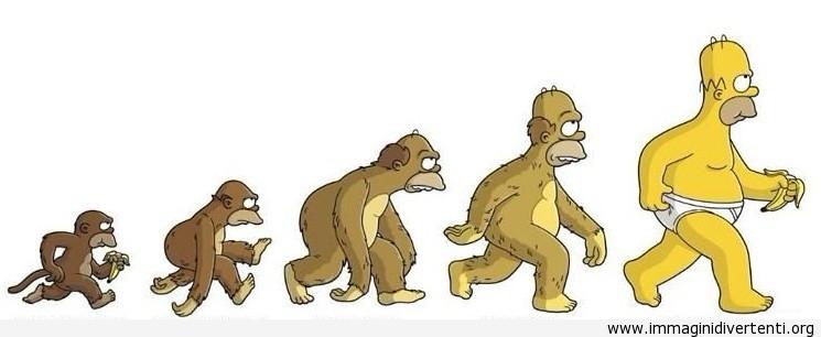 Evoluzione Homer Simpson immaginidivertenti.org