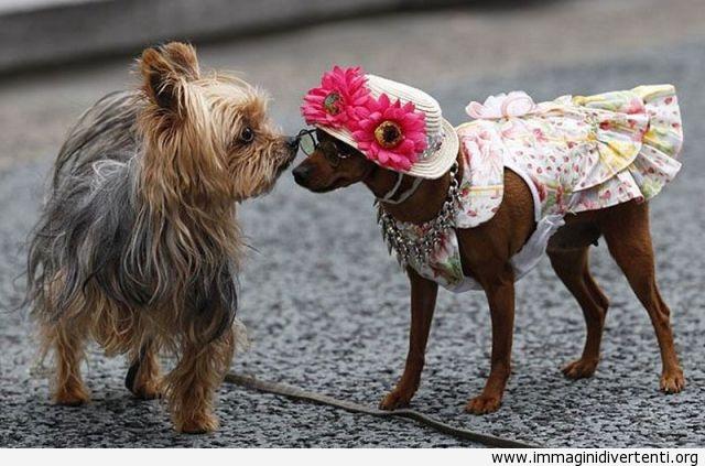 Ciao, oggi sei tutta diversa, come mai? Per l'appuntamento? immaginidivertenti.org
