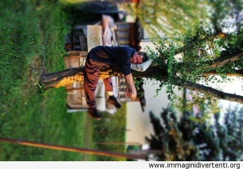 Dormire sull'albero? Guarda meglio immaginidivertenti.org