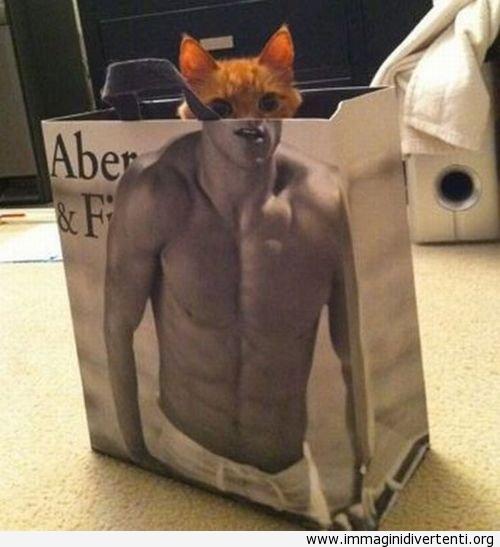 Sono l'uomo gatto immaginidivertenti.org