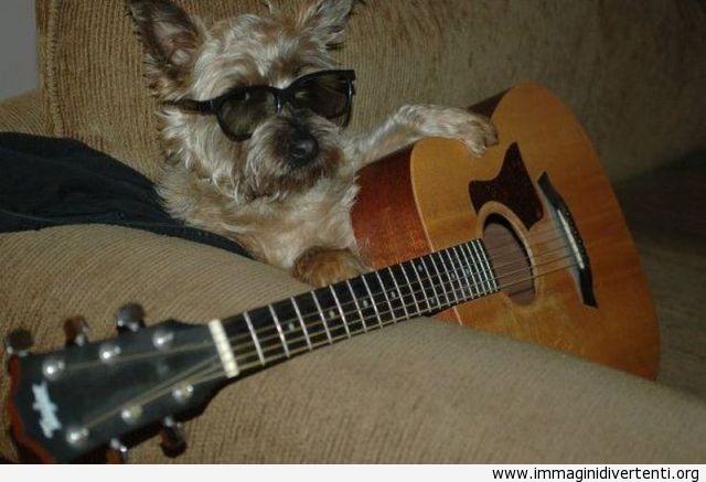 Suonare una chitarra non è così difficile