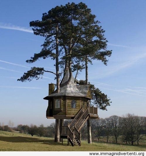Vorrei vivere in una casa così immaginidivertenti.org