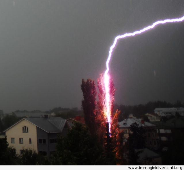 Foto di un fulmine che colpisce l'albero immaginidivertenti.org
