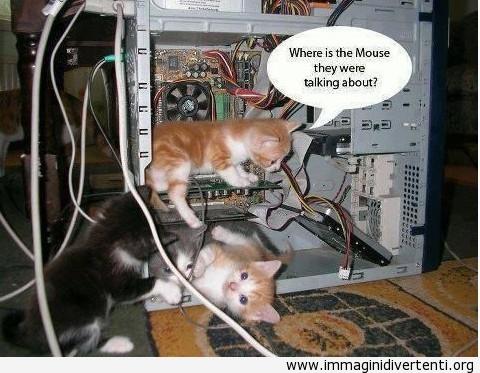 Ricerca di mouse immaginidivertenti.org