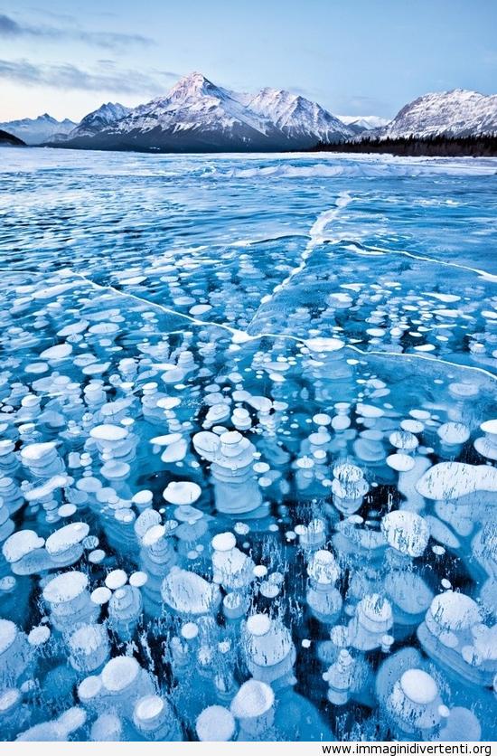 Si tratta di bolle congelate immaginidivertenti.org