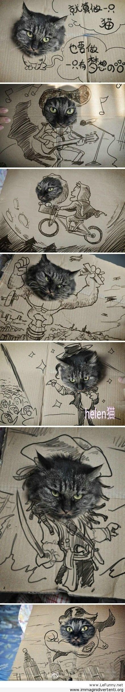 Un gatto con i sogni immaginidivertenti.org