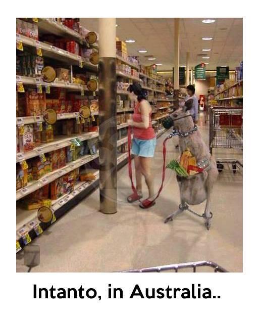 Intanto, in Australia... immaginidivertenti.org