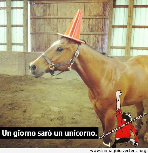 Un giorno sarò un unicorno immaginidivertenti.org